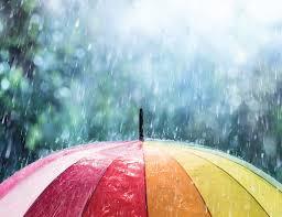 هل تتخيل هذا العالم من دون المطر