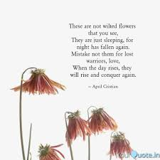 these are not wilted flow quotes writings by aarushi
