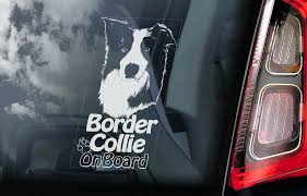 Border Collie Car Sticker Sheepdog Window Decal Bumper Sign Dog Pet Gift V06 Ebay