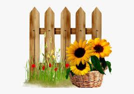 Garden Pinterest Fences Sunflowers Borders Design Flower Fences Hd Png Download Kindpng