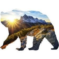Bear Wall Decals Wayfair