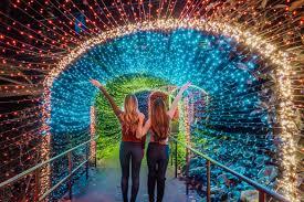 atlanta botanical gardens lights 2018
