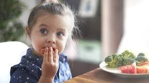 baby toddler vegetarian meal plan