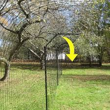 Free Standing Cat Fence Enclosure System Cat Fence Cat Enclosure Outdoor Cat Enclosure