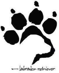 Footprint Yorkie Dog Doggie Pet Puppy Window Decal Outdoor Indoor Dog Tattoos Dog Silhouette Beagle Tattoo