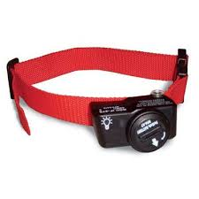 Petsafe Wireless Extra Dog Collar Products Wireless Dog Fence Pets Dogs