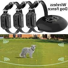 Dogs Wireless Fence Wirelessfencer Com