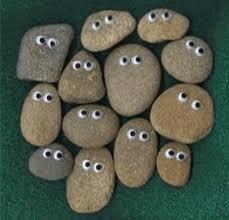 Pet Rocks (1970's) | Mortal Journey
