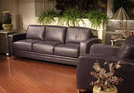 remove odors from leather furniture
