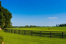 Fencing Is Available At Cherokee Feed Seed In Georgia