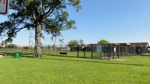 Ida Reed Dog Park | Beaumont, TX 77702