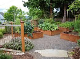 corten steel raised beds planted