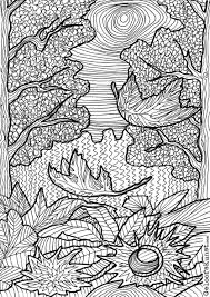 Forest Colouring Page Forest Coloring Pages Coloring Pages