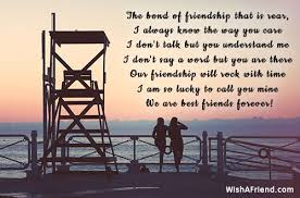 the bond of friendship that is best friend quote