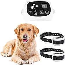 Amazon Com Wireless Dog Fence System Electric Dog Fence Safe Containment System For All Dogs And Pets With Waterproof And Rechargeable Dogs Training Collar 2dogs Sxdd Pet Supplies