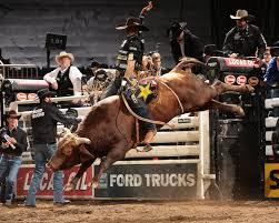 bull riding wallpapers top free bull