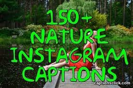 best nature captions for instagram nature related beauty pic