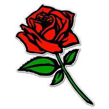 Red Rose Car Bumper Sticker Window Decal 5 X 3