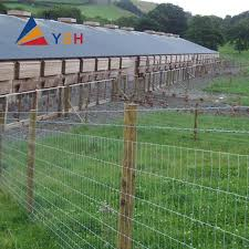 Hot Sale 2 5 3 0mm Hot Dipped Galvanized Sheep Wire Mesh Fence Farm Cattle Feild Fence Buy Goat Wire Fence Hot Sale Galvanized Wire Mesh Fence Farm Cattle Feild Fence Product On Alibaba Com