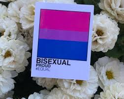 Bisexual Decal Etsy