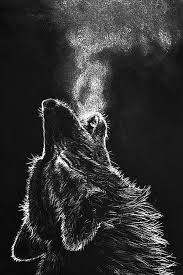 hd wallpapers of wolf for mobile wolf