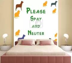1 518 Spay Wall Murals Canvas Prints Stickers Wallsheaven