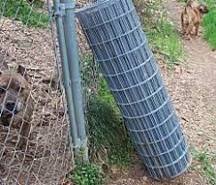 Pin By Danelle Ferqueron On Gardening Dog Proof Fence Outdoor Dog House Outdoor Dog