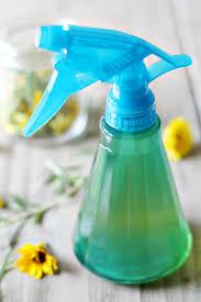 acv spray for dogs repels fleas