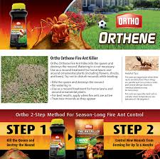 Get The Best Fire Ant Killer  Background