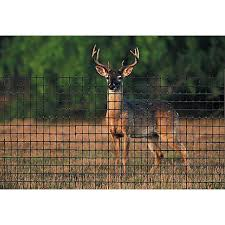 Tenax Deer Fence At Tractor Supply Co Deer Fence Cattle Panels Deer Netting