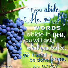 "Image result for ""If you abide in Me, and My words abide in you, you will ask what you desire, and it shall be done for you."" John 15:7, NKJV"