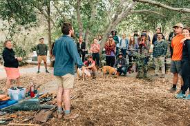 Hipcampout Summer Series: Land Stewardship at the Mare Island Preserve |  Hipcamp Journal - Stories for Campers and our Hosts