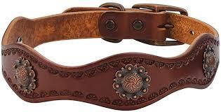 weaver leather sun dog collar