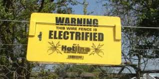 Electric Fencing Chickens Keeping Chickens A Beginners Guide