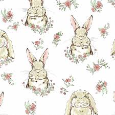bunny wallpapers top free bunny