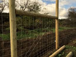 The Mile Long 8 Ft High Electric Deer Predator Fence Noci