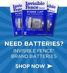 Staydog Invisible Fence Brand Faqs