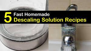 homemade descaling solution recipes 5