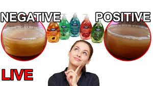 pregnancy test positive vs negative