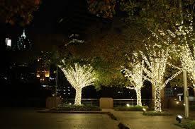 Đèn led dây dạng hạt quấn cây