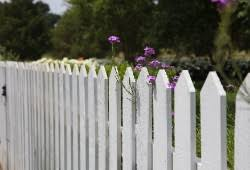 5 Best Uk Fence Paints Reviews Comparison