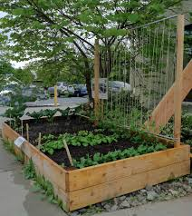 33 Inspiring Diy Trellis Ideas For Growing Climbing Plants The Self Sufficient Living