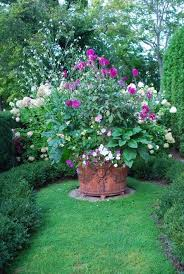cottage garden container plant