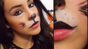 makeup for cat in the hat face
