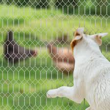 China 2 Inch Hexagonal Poultry Netting Galvanized Chicken Wire Mesh Fence Photos Pictures Made In China Com