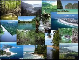 Hermosos Ecosistemas del Planeta Tierra: ECOSISTEMAS ACUÁTICOS