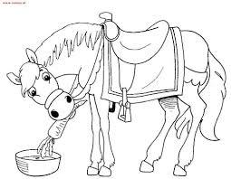 Kleurplaat Paard Van De Sint Kind Tekening Dingen Om Te Tekenen