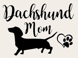Dachshund Decal Dachshund Sticker Dachshund Car Decal Etsy In 2020 Car Decals Dachshund Mom Dachshund