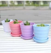 tray garden plants flowerpots