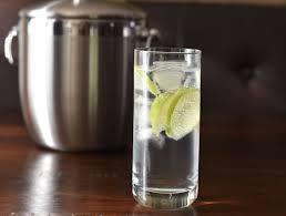 gin tonic l low carb ls